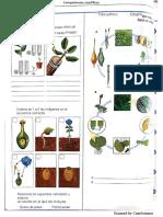 Taller de propagacion en plantas-convertido.docx