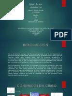 franky anturi_grupo136_presentacion pre-tarea