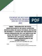 INFORME NOVIEMBRE SUPERVISION DE SEGURIDAD