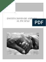 INSTITUCIONES-DEL-AMPARO-AL-INCAPAZ-D.I.P