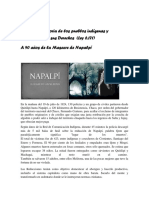 NAPALPI.pdf