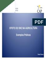 SNC_AGRICULTURA-ExemploBovinos