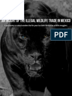 An Insight of the Illegal Wildlife Trade in Mexico