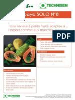 fiche technique papaye solo