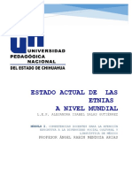 3 REPORTE ESTADO ACTUAL DE LAS ETNIAS A NIVEL MUNDIAL