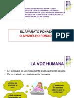 3 EL APARATO FONADOR (2)