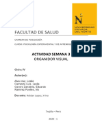 MAPA EXPERIMENTAL.docx