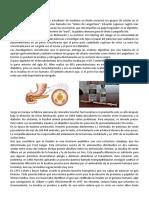 APORTES CIENTIFICOS FORMACION CIVICA Y E.