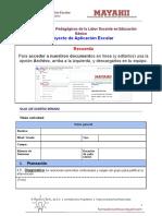 PAE MODELO DE APLICACIÓN- Docencia estratégica