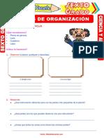 Niveles-de-Organización-para-Sexto-Grado-de-Primaria