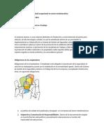 Programa de Seguridad y salud ocupacional en sector metalmecánico.docx