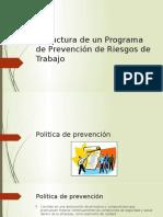 Estructura de un Programa de Prevención de Riesgos.pptx