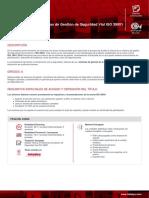 fichascurso_Ficha_auditor-interno-en-sistemas-de-gestion-de-seguridad-vial-iso-39001.pdf