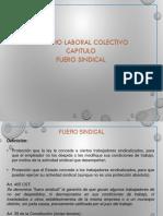 Fuero Sindical.pdf