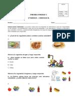 PRUEBA UNIDAD 1 CIENCIAS NATURALES 1ºBASICO