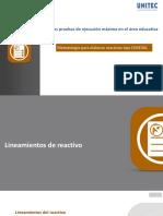 2. Lineamientos del reactivo - copia.pdf