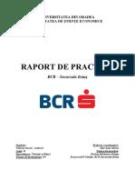 Raport de practica.pdf