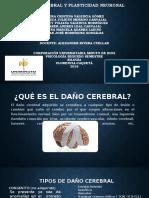 DAÑO CEREBRL Y PLASTICIDAD NEURONAL