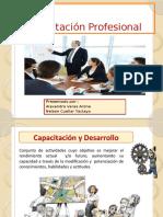 CAPACITACION PROFESIONAL.pptx