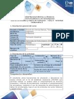 Guía de actividades y rúbrica de evaluacion - Tarea 3 - Actividad Colaborativa 2