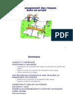 Management des risques_Cours.pdf