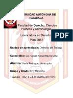 Estabilidad y Duración de la Relación del Trabajo- DERECHO DEL TRABAJO.docx