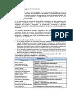 MATRIZ DE SESIONES DE REFORZAMIENTO (1)