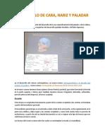 DESARROLLO DE CARA embrio.pdf