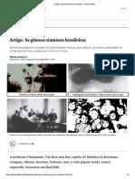 Artigo_ As gêmeas siamesas brasileiras - Jornal O Globo