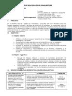 PLAN RECUPERACIÓN HORAS LECTIVAS DOCENTE CETPRO AVI 2020