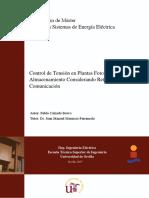 TFM_MSEE_Pablo_Calzado_Bravo.pdf