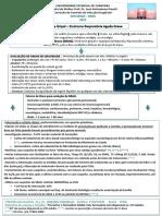 Algortimo_CAISM_Influenza_SRAG_2014