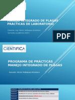 PRACTICA MIP 01 ref.pptx