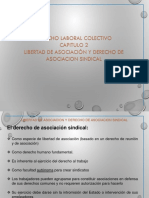 Libertad de asociación sindical.pdf
