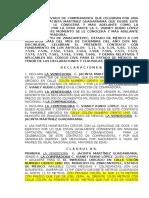 zinacantepec.doc