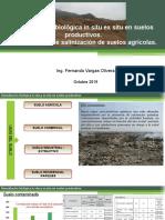 Remediación biológica in situ ex situ en suelos.pptx