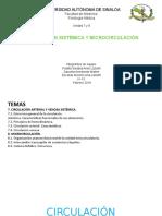 CIRCULACIÓN SISTÉMICA (1)