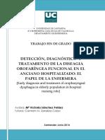 SanchezPelaezMV.pdf