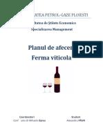 Plan de afaceri - Ferma viticol