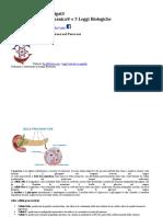 diabete completo d.docx