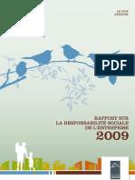 Rapport Rse 2009 du Toit Angevin