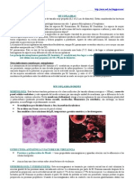 Micoplasma Hominis y Urea Plasma Urealyticum