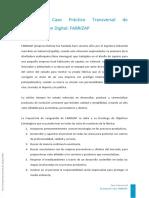 DescripciónCasoFABRIZAP.pdf