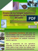 10. María Jaizme-Vega. ICIA