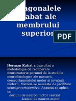 Diagonale Kabat (Membrul Superior)