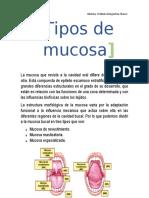 TIPOS DE MUCOSA V.docx