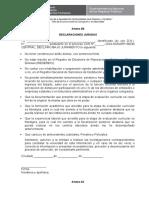 ANEXO 2B  y 2C - DECLARACIONES JURADAS.doc
