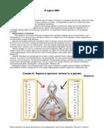 Курс ABC . Каналы, контуры.pdf