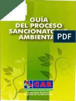 Guía del proceso sancionatorio ambiental.pdf