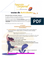 PATRONES DE LA DANZA DISTINTIVOS EN GUATEMALA, GUÍA 3